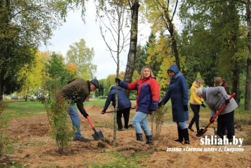 В Гродненской области к акции «Чистый лес» присоединились около 4 тысяч человек
